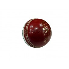 Training cricket ball for pace bowler-red/white