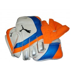 Puma Keepng Gloves